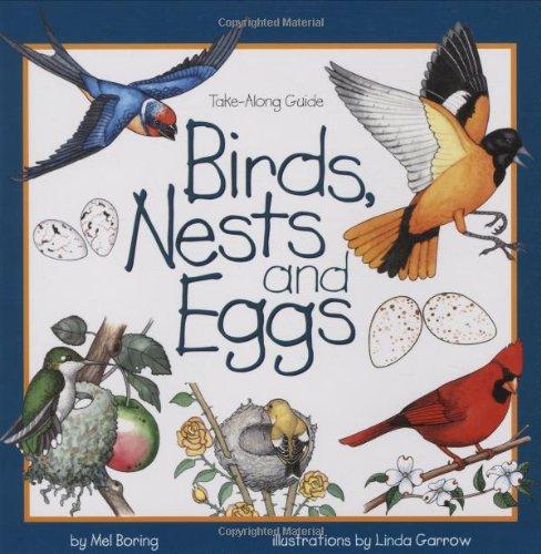Bird, nests, eggs