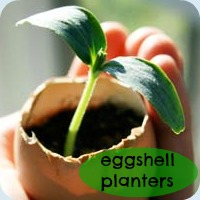 Eggshell planters tutorial button