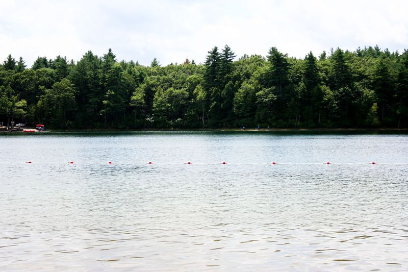 Walden pond 1