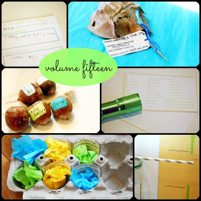 Volume fifteen collage