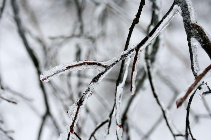 Vermont snow 2