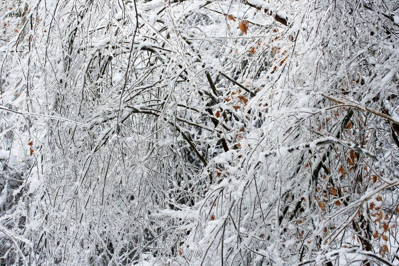 Snow and ice 4