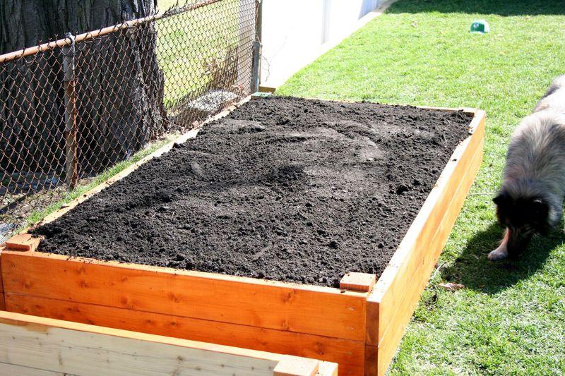 Garden beds 2